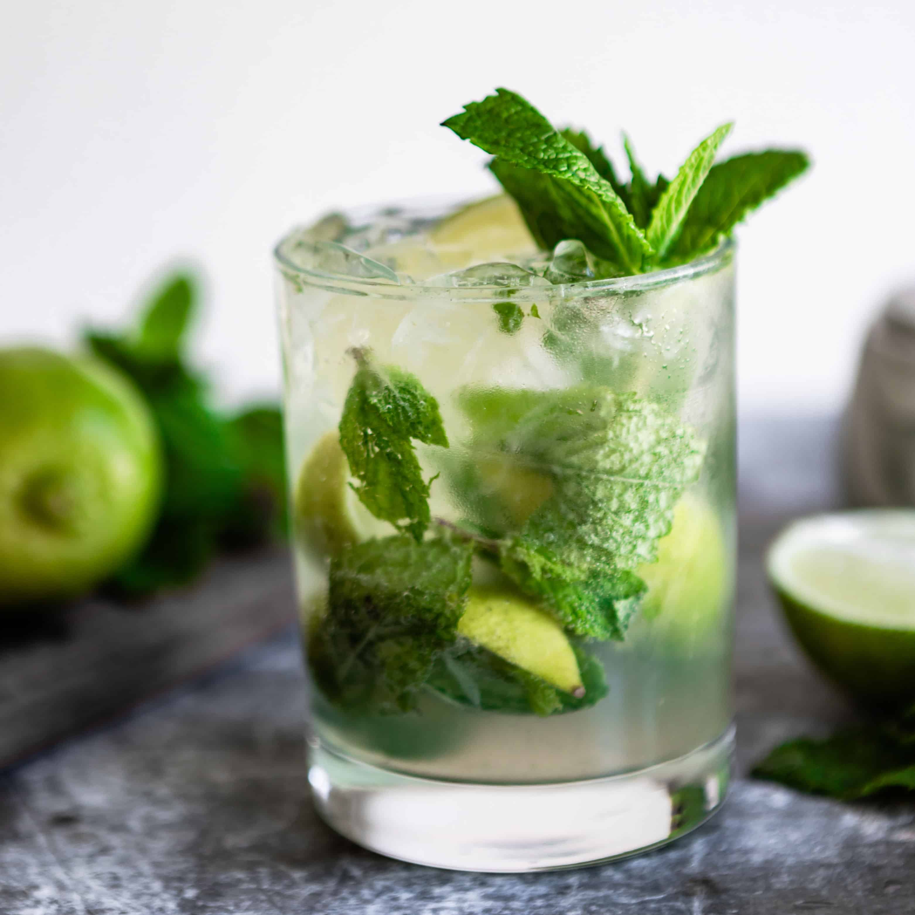 mojito_cocktail_hr10_square_culinary_hill